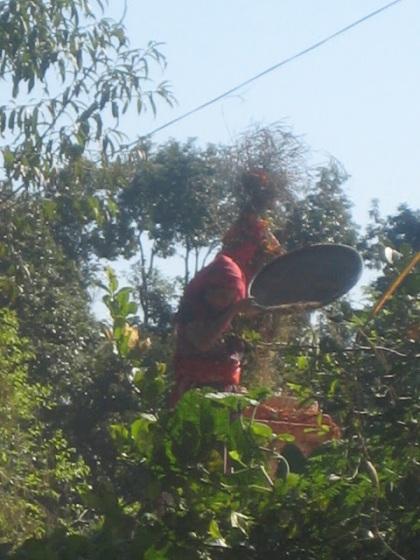 NepalPhotosNovember12-November18 006